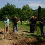 Károlyi Bernát vértanú földi maradványainak keresése a 301-es parcellában